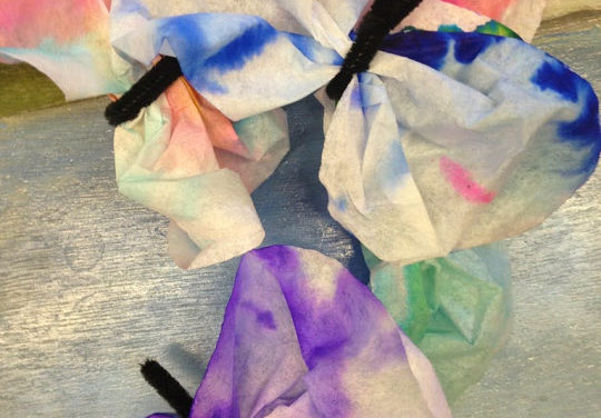 Observing Color Compositions and Butterflies